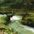 Covadonga pasea por La Viesca